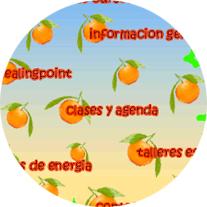 eivida circular
